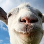 Игра Goat Simulator