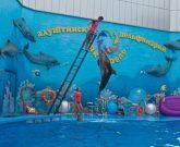 Игра Для девочек дельфины