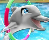 Игра Шоу дельфинов 1
