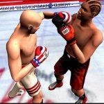 Игра Бокс на компьютер