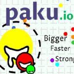 Игра Paku.io