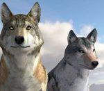 Игра Игра Симулятор волка играть онлайн