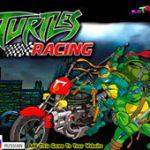 Игра Гонки: Черепашки на мотоциклах